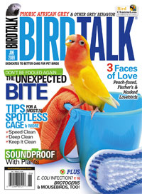 Bird Talk Magazine – June 2009
